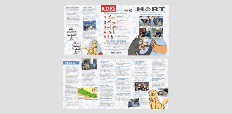 Folded Leaflet Design Company